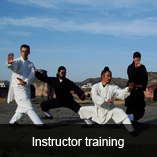 kung fu martial arts training