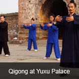 traditional kung fu training