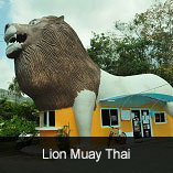 Lion Muay Thai