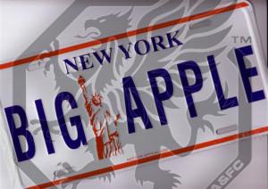 MMA-in-New-York