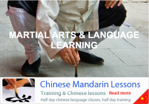 Martial Arts and Mandarin studies