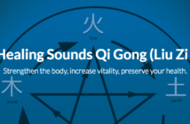 Learn the origin, characteristics and how to perform Liu Zi Jue